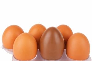 shutterstock_149414660 chocolate egg amongst hens eggs Mar15