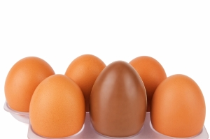 shutterstock_149414660 chocolate egg amongst hens eggs Mar15