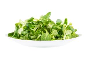 shutterstock_253513240 watercress salad apr15