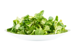 shutterstock_253513240 watercress salad apr15