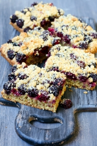 shutterstock_149457191 blackberry and coconut squares June15