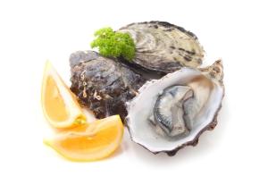 shutterstock_214482454 oysters Jun15