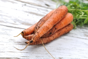 shutterstock_289838444 carrots with tops July15