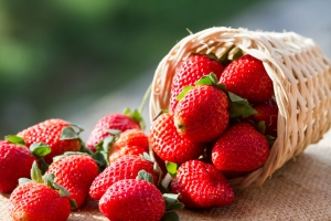 shutterstock_165452462 strawberries Aug15