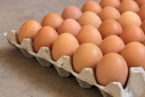shutterstock_278990921 eggs Nov15