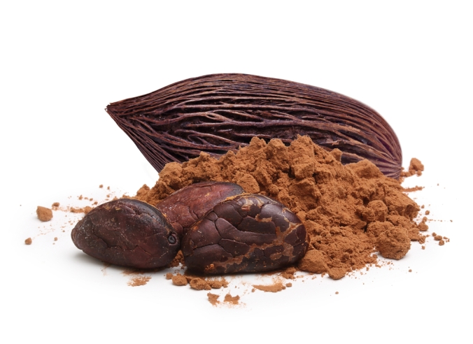 shutterstock_261192740 cacao beans and pod Dec15