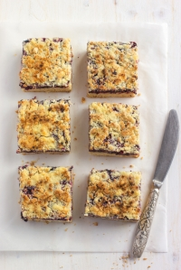shutterstock_269803547 blackberry and coconut squares Mar16