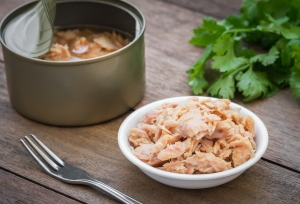 shutterstock_306844715 tinned tuna June16