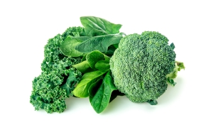 shutterstock_390376168 broccoli spinach kale Mar16