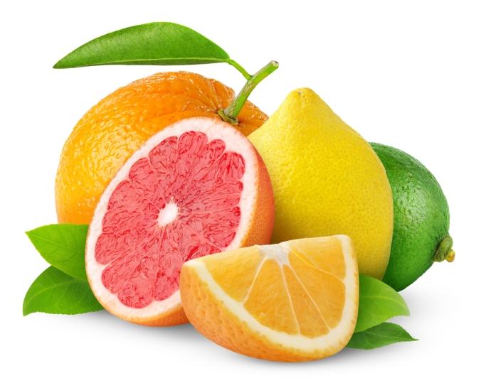 Citrus fruits including lemon, orange and grapefruit