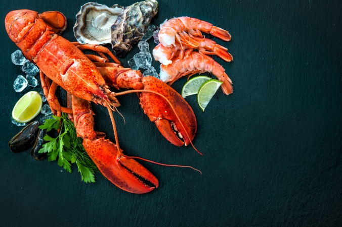 Close up of a lobster, oysters and prawns to represent shellfish