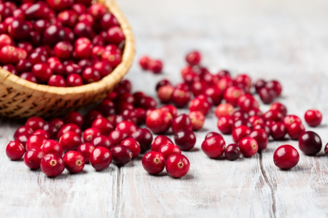 A basket of fresh cranberries
