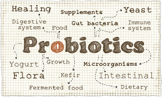 A word cloud around Probiotics