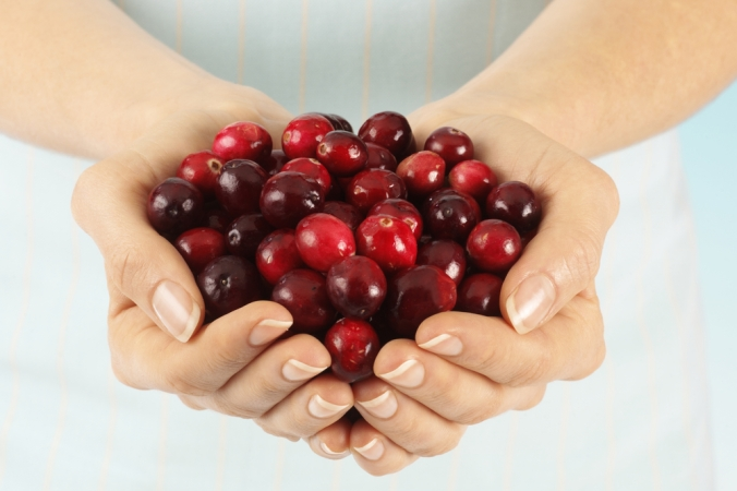 Close up of a woman's hands holding a pile of cranberries