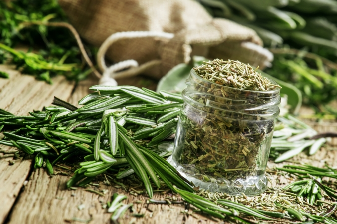 A bunch of fresh rosemary and dried rosemary in a pot