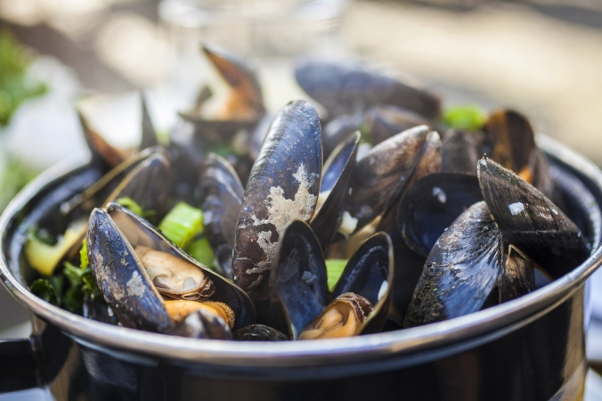 A dish of moules mariniere French Mussels