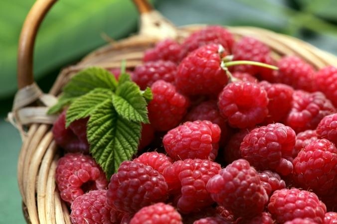 A punnet of fresh raspberries