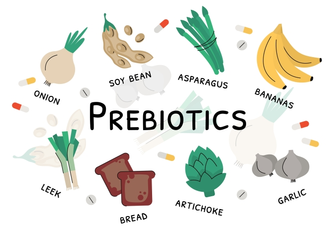 Prebiotic,Products,,Sources,Of,These,Bacteria,,Nutrient,Rich,Food.,Flat